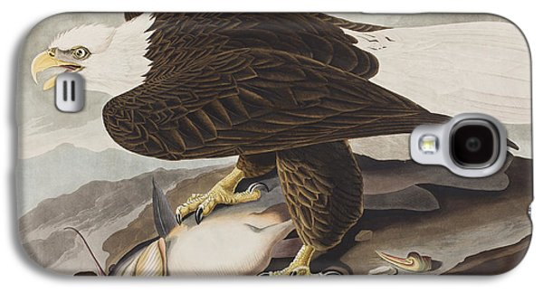 White-headed Eagle Galaxy S4 Case