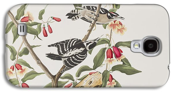 Downy Woodpecker Galaxy S4 Case by John James Audubon