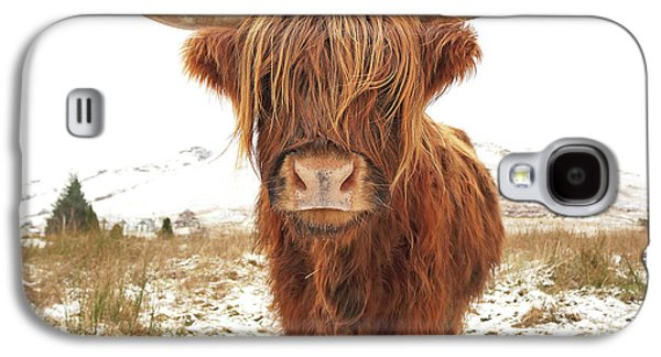 Cow Galaxy S4 Case - Highland Cow by Grant Glendinning