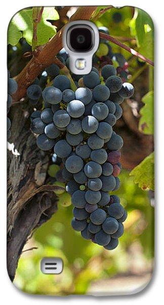 Red Vines Galaxy S4 Case by Ulrich Schade
