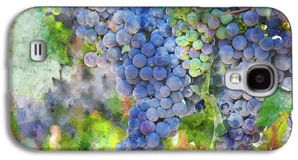 Red Wine Grapes On The Vine Galaxy S4 Case