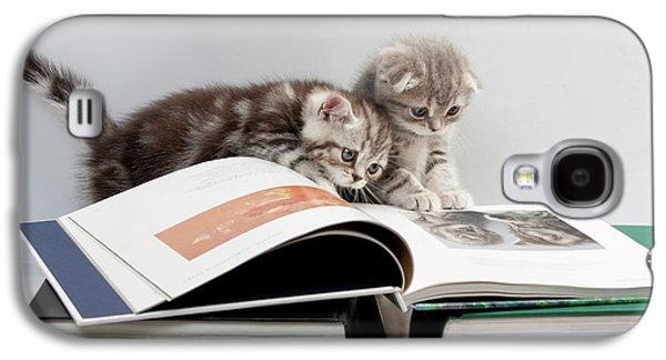 Scottish Fold Cats Galaxy S4 Case