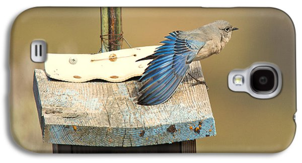 Spread Your Wings Galaxy S4 Case by Mike Dawson