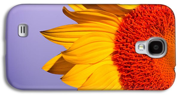 Sunflower Galaxy S4 Case - Sunflowers by Mark Ashkenazi