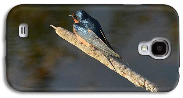 Balance  Galaxy S4 Case
