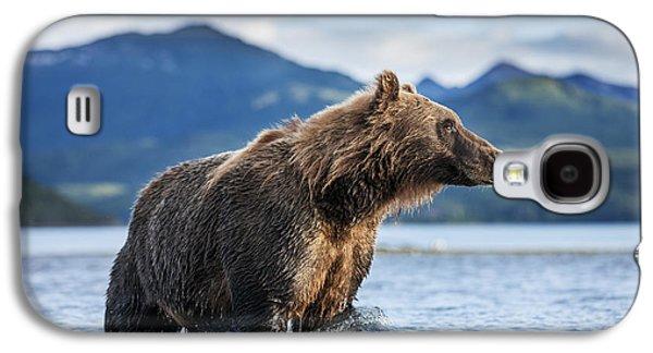 Coastal Brown Bear  Ursus Arctos Galaxy S4 Case by Paul Souders