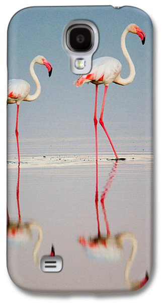 Greater Flamingos Phoenicopterus Roseus Galaxy S4 Case by Panoramic Images