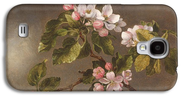 Hummingbird And Apple Blossoms Galaxy S4 Case