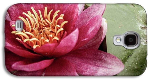 Galaxy S4 Case - Lotus by Cesar Vieira