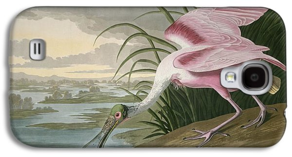 Spoonbill Galaxy S4 Case - Roseate Spoonbill by Dreyer Wildlife Print Collections
