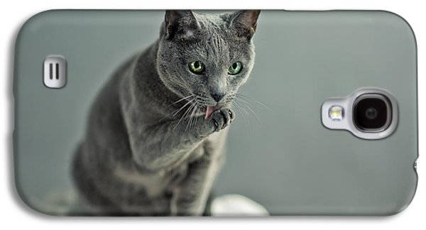 Cat Galaxy S4 Case - Russian Blue by Nailia Schwarz