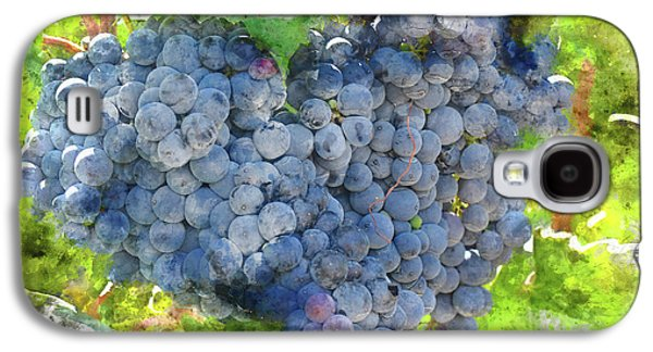 Red Wine Grapes On The Vine Galaxy S4 Case by Brandon Bourdages