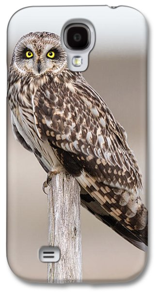 Short Eared Owl Galaxy S4 Case by Ian Hufton