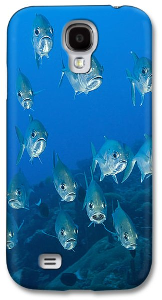 New Britain Galaxy S4 Cases - A School Of Bigeye Trevally, Papua New Galaxy S4 Case by Steve Jones