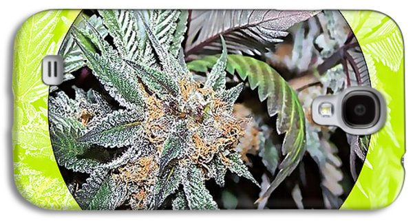 Cannabis 420 Collection Galaxy S4 Case by Marvin Blaine