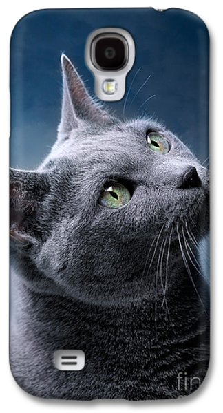 Cat Galaxy S4 Case - Russian Blue Cat by Nailia Schwarz