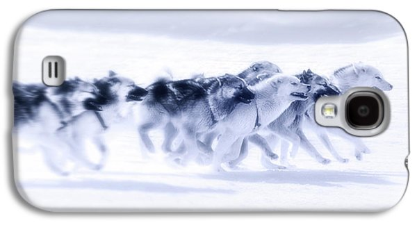 Huskies In Ilulissat, Greenland Galaxy S4 Case by Joana Kruse