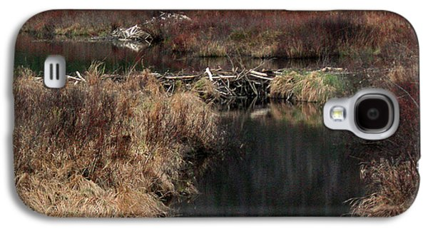 A Beaver's Work Galaxy S4 Case by Skip Willits