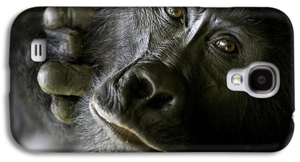 Gorilla Galaxy S4 Case - A Close Up Portrait Of A Mountain by Michael Poliza