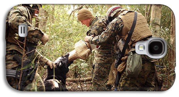 A Combat Tracking Dog Subdues A Mock Galaxy S4 Case by Stocktrek Images