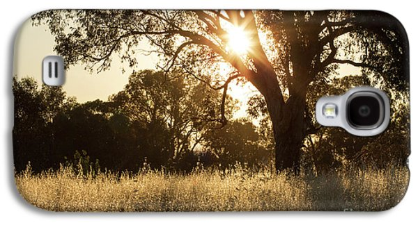 Galaxy S4 Case featuring the photograph A Golden Afternoon by Linda Lees