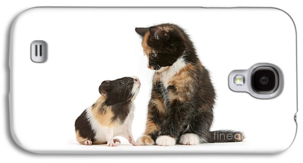 A Guinea For Your Thoughts Galaxy S4 Case