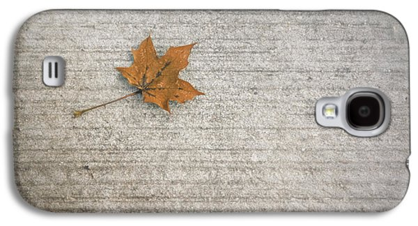 A Hint Of Autumn Galaxy S4 Case by Scott Norris
