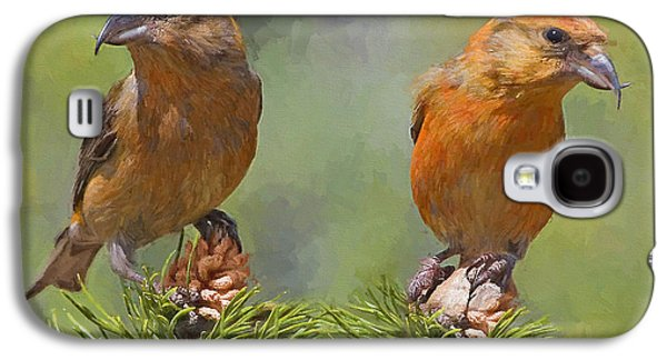 Crossbill Galaxy S4 Case - A Pair Of Male Red Crossbills - Painted by Ericamaxine Price