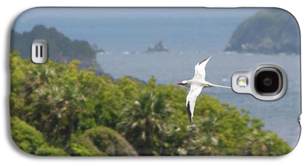 Galaxy S4 Case - A Red-billed Tropicbird (phaethon by John Edwards