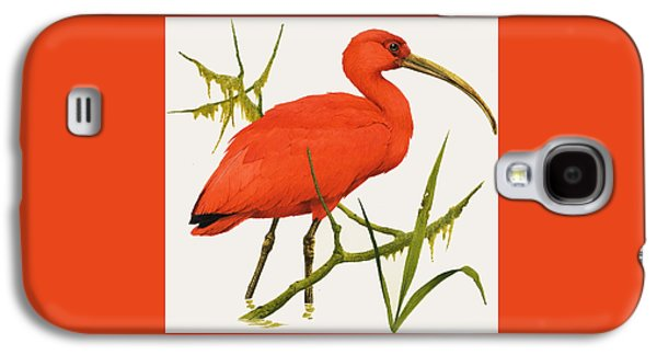 A Scarlet Ibis From South America Galaxy S4 Case