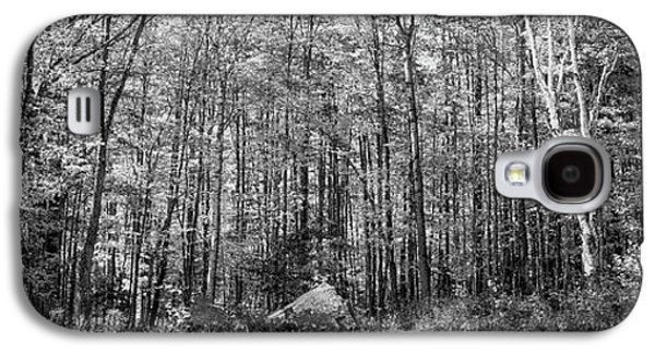 A Stand Of Trees Galaxy S4 Case