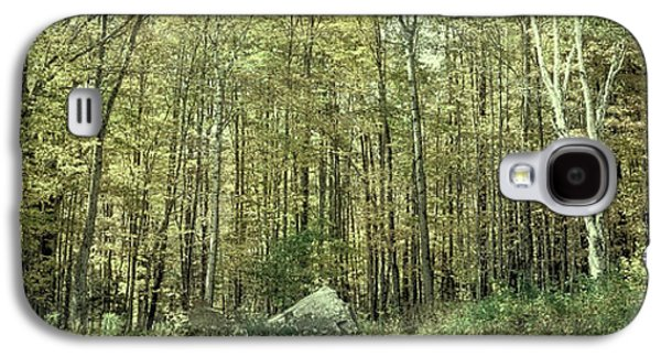 A Stand Of Trees In Autumn Galaxy S4 Case