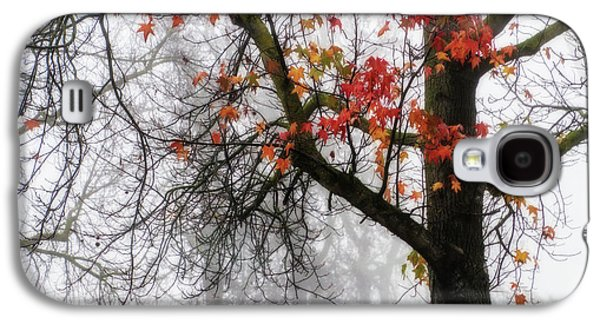 A Trace Of Autumn Galaxy S4 Case by Terry Davis