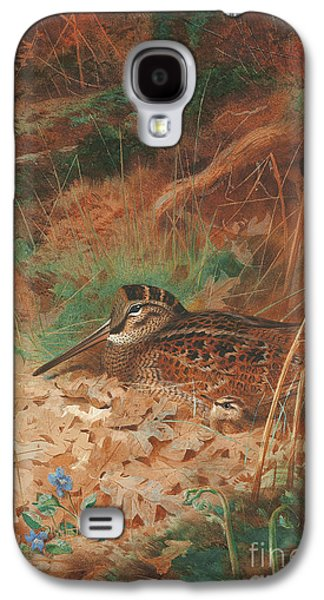 A Woodcock And Chick In Undergrowth Galaxy S4 Case
