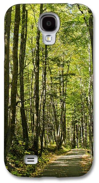A Woodsy Trail Galaxy S4 Case