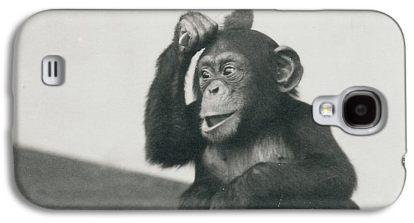 A Young Chimpanzee Playing With A Brush Galaxy S4 Case