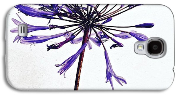 Galaxy S4 Case - Agapanthus 2 by Julie Gebhardt