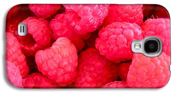 Agenda For Today ... Raspberry Jam Galaxy S4 Case by Gwyn Newcombe
