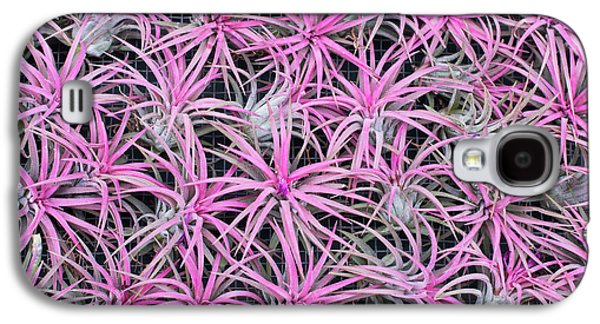 Airplants Galaxy S4 Case