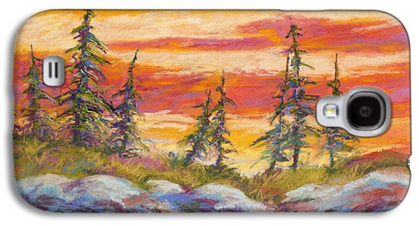 Pastels Galaxy S4 Cases - Alaskan Skies Galaxy S4 Case by Marion Rose