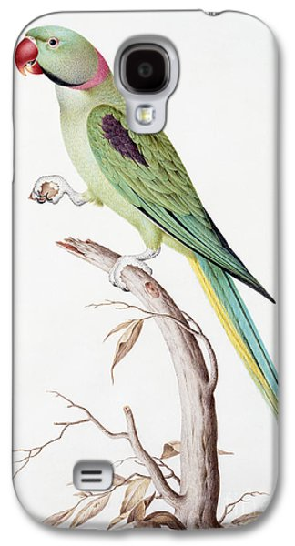 Alexandrine Parakeet Galaxy S4 Case by Nicolas Robert