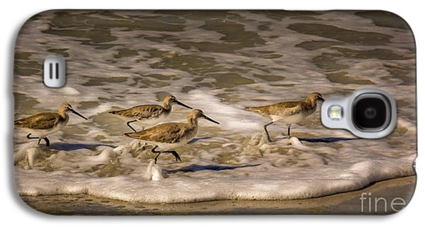Sandpiper Galaxy S4 Case - All Together Now by Marvin Spates