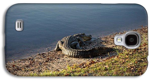 Alligator On The Sand Galaxy S4 Case