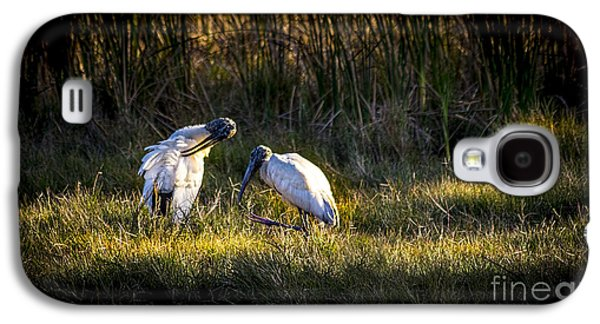 Spoonbill Galaxy S4 Case - Almost Bed Time by Marvin Spates