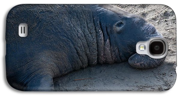 Alpha Male Resting Galaxy S4 Case by Bradley Bennett