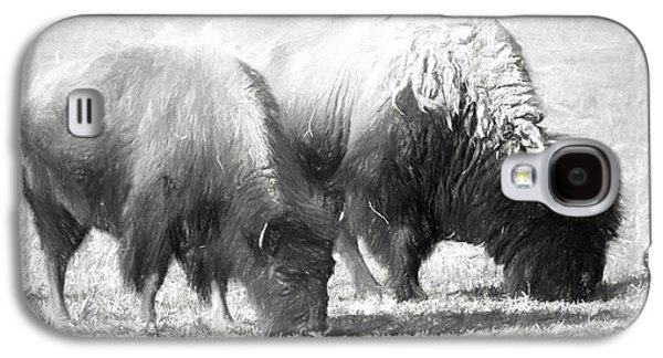 American Bison In Charcoal Galaxy S4 Case by Linda Phelps