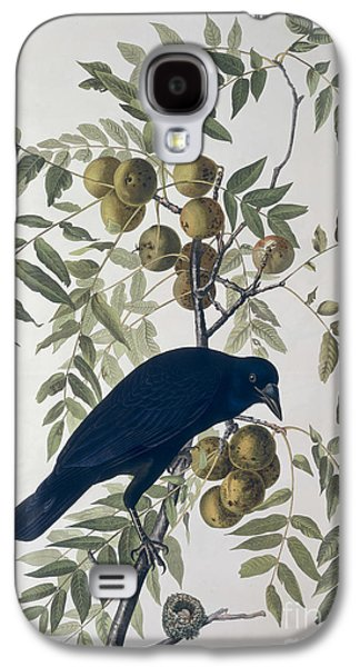 Engraving Galaxy S4 Case - American Crow by John James Audubon