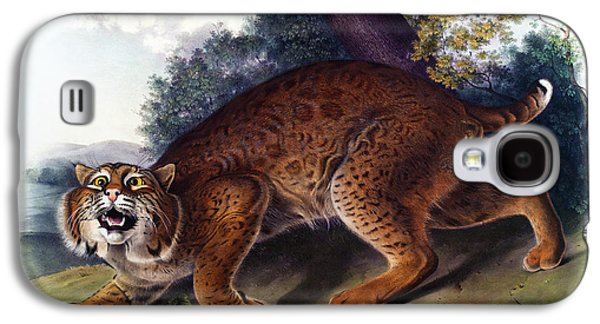 American Wild Cat Antique Print Audubon Quadrupeds Of North America Plate 1 Galaxy S4 Case by Orchard Arts