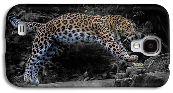 Amur Leopard On The Hunt Galaxy S4 Case by Martin Newman