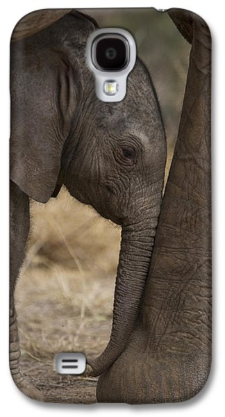 Cow Galaxy S4 Case - An Elephant Calf Finds Shelter Amid by Michael Nichols